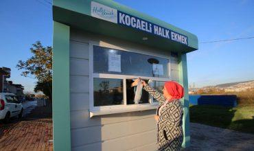 Hebo Yapı Sale Cabins Appeal Great Interest-7